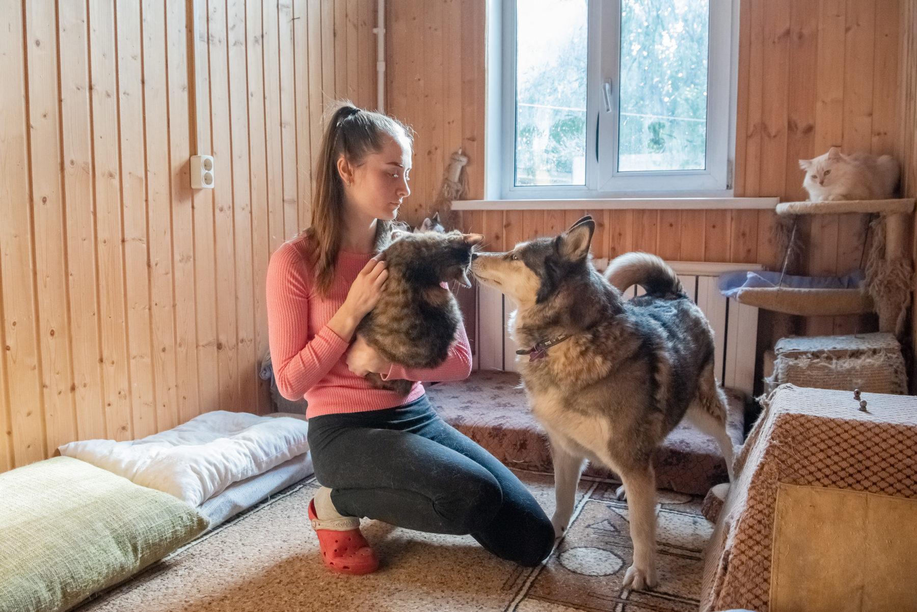 Около 50 животных приютила в частном доме студентка из Балашихи